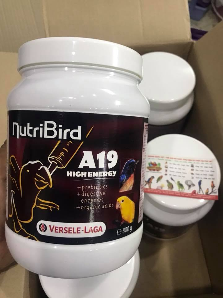 nutribird a19 high energy