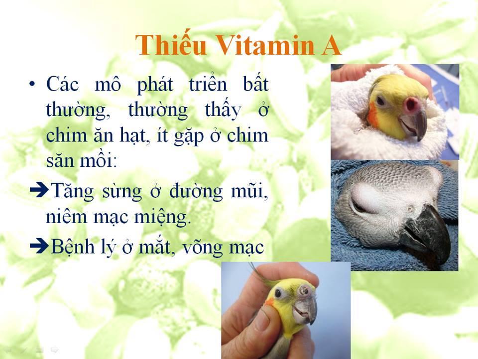 thieu vitamin a