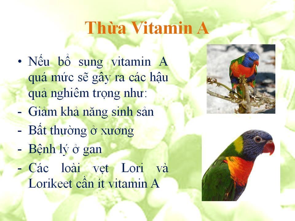 thua vitamina